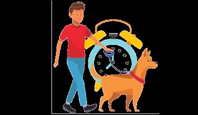 time-efficient training
